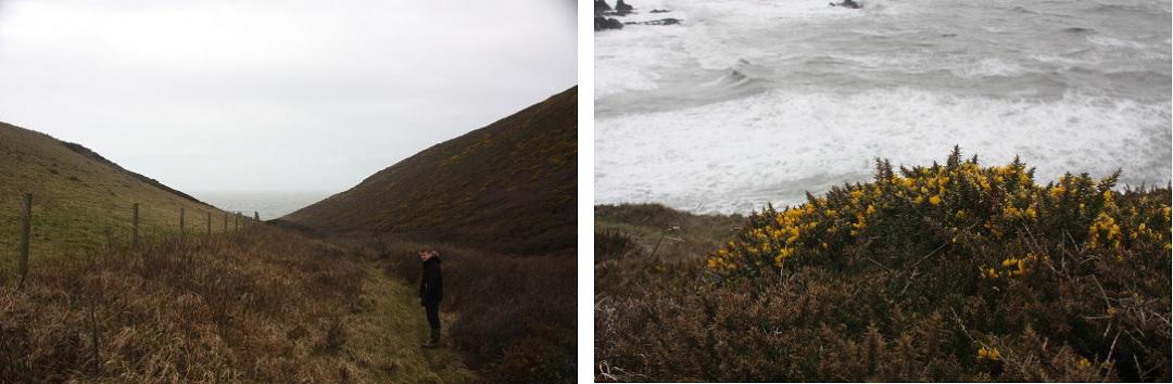 731-days-hills-adam-heather