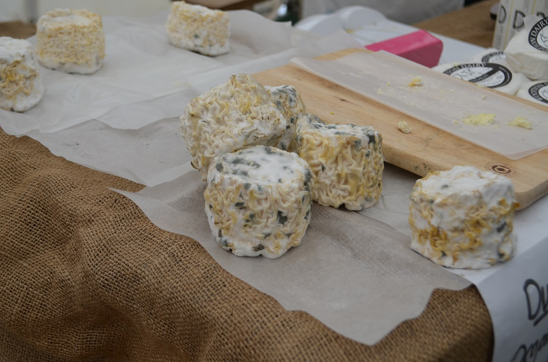 exeter-festival-of-south-west-food-and-drink-mouldy-goats-cheese