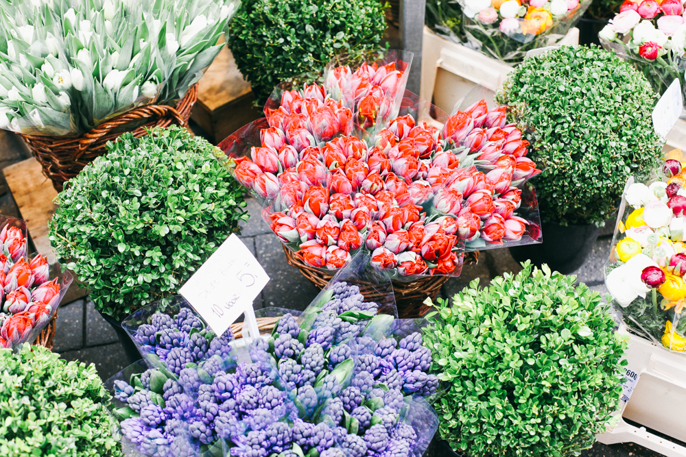 my-favourite-blogs-2-take-courage-amsterdam-flowers