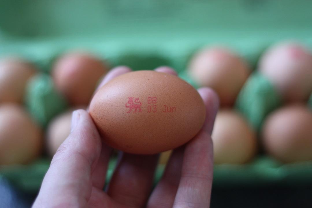 recipe-battenberg-cake-british-lion-eggs-single-egg