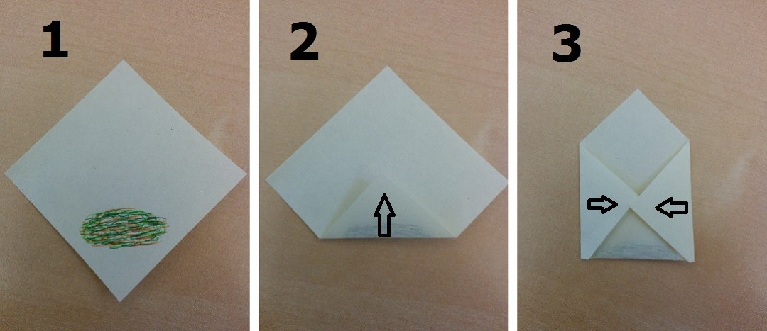 recipe-homemade-chicken-spring-rolls-with-garlic-chilli-courgetti-origami-1