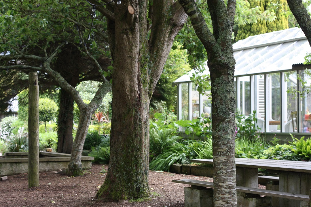 restaurant-review-potager-glasshouse-garden-trees