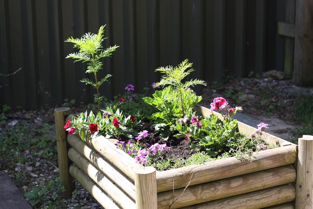 riverford-farm-shop-flower-box-raised-bed